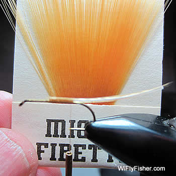 secure tail fibers to hook shank