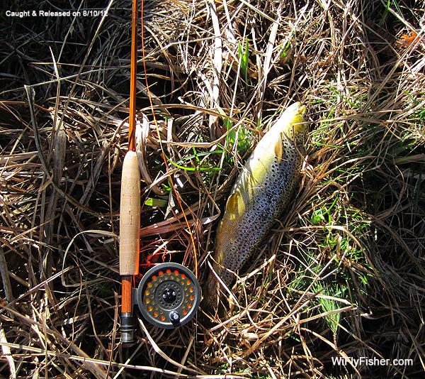 Bamboo Rod Stuff