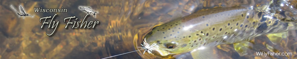 Wisconsin Fly Fishing during the Stonefly Hatch