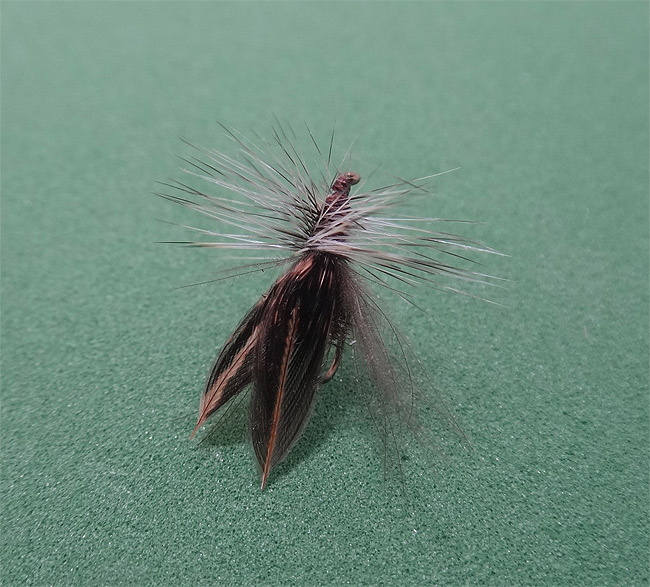 Early Brown Stonefly pattern